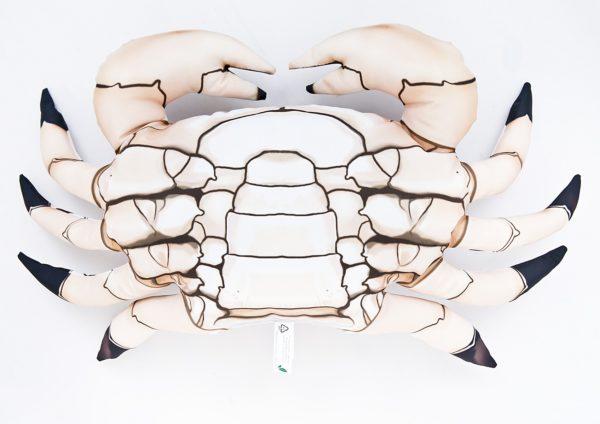 Poduszka krab cętkowany przypominajaca prawdziwego kraba Calico.